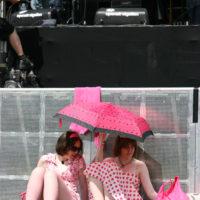 Warten aufs nächste Konzert, 2008